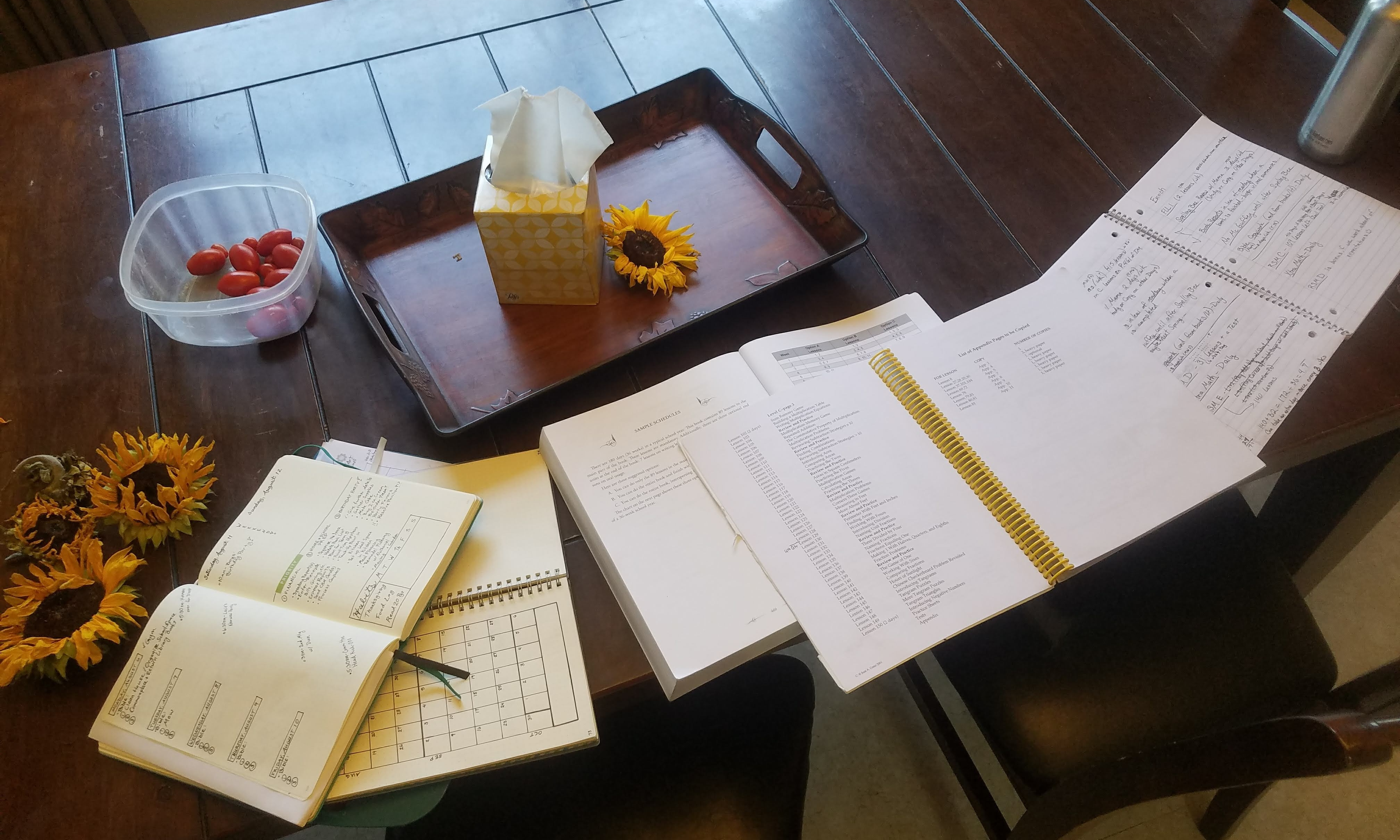 homeschool planning back to school
